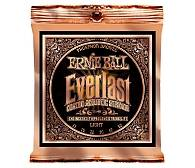 ERNIE BALL EB 2548 seria EVERLAST COATED 80/20